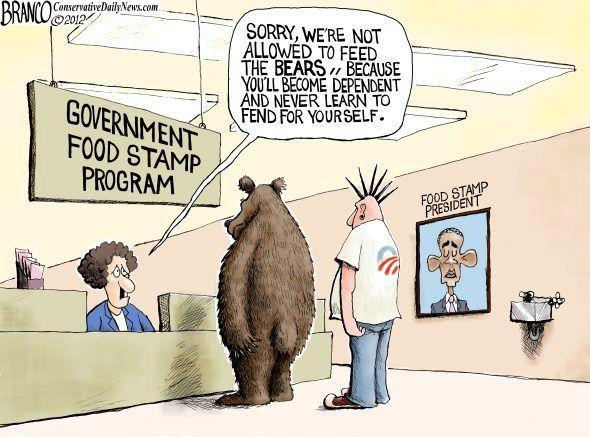 Govt Food Stamp Program - Not For Bears