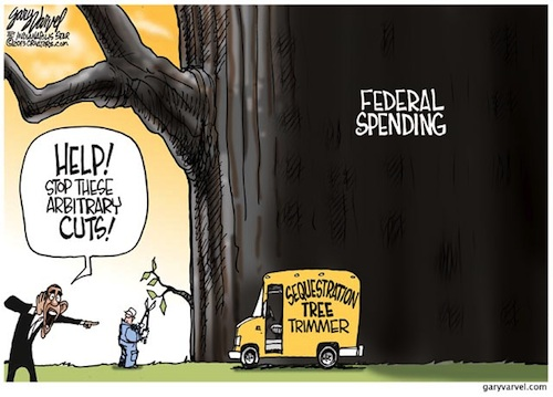 Sequestration Tree Trimmer