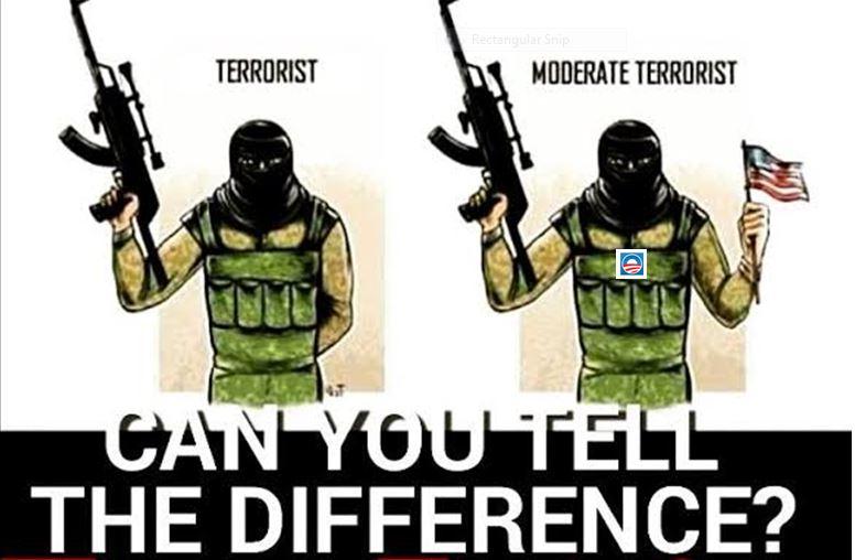 terrorist vs terrorst